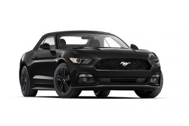 Ford Mustang Convertible FM