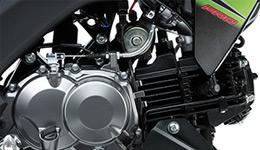 Z125 Pro KRT Replica Fuel-injected 125 cm3 4-stroke Single