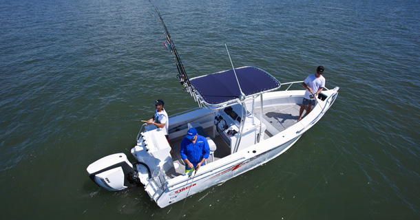619 Sea Ranger Specifications