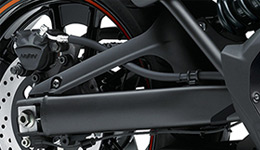 Vulcan S SE D-Shaped Swingarm