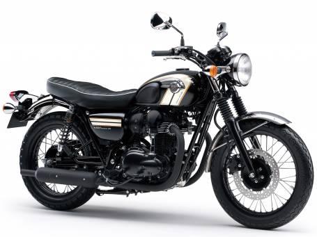 New 2016 W800 SE