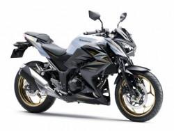 New Kawasaki 2016 Z300 ABS SE