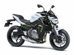 New Kawasaki Z650L