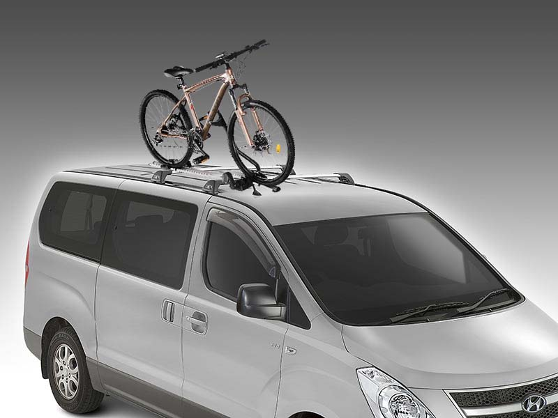 Thule Bike Rack (wheel on)