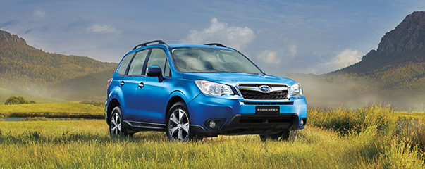 Forester 2.5i Luxury Limited Edition