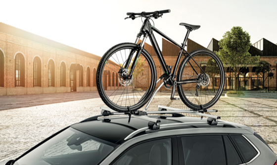 Roof Rack with Bicycle Carrier