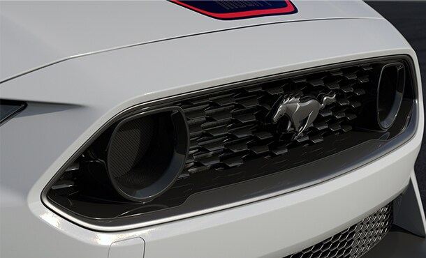 Mustang Mach 1 Front Grille