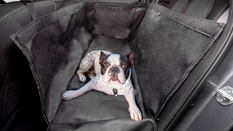 "<img src=""Rear seat pet cover."