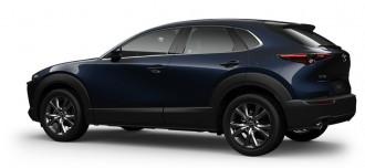 2020 Mazda CX-30 DM Series G25 Astina Wagon image 19