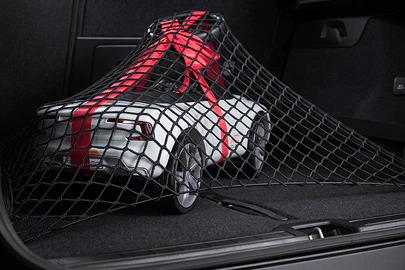 Luggage net Image