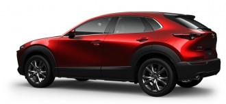 2020 Mazda CX-30 DM Series X20 Astina Wagon image 19
