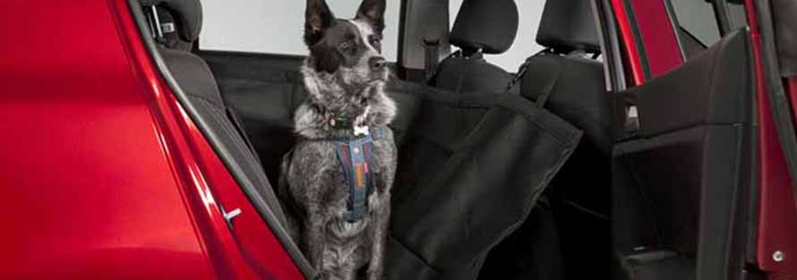 """<img src=""""Pet Seat Cover"""