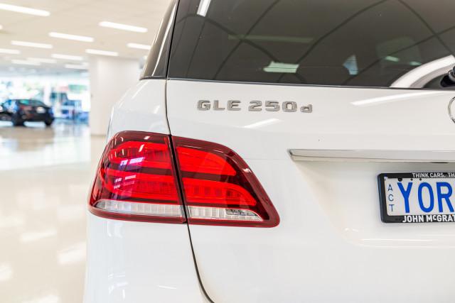 2015 Mercedes-Benz Gle-class W166 GLE250 d Wagon Image 14
