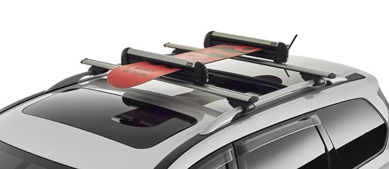 Ski/Snowboard Carrier