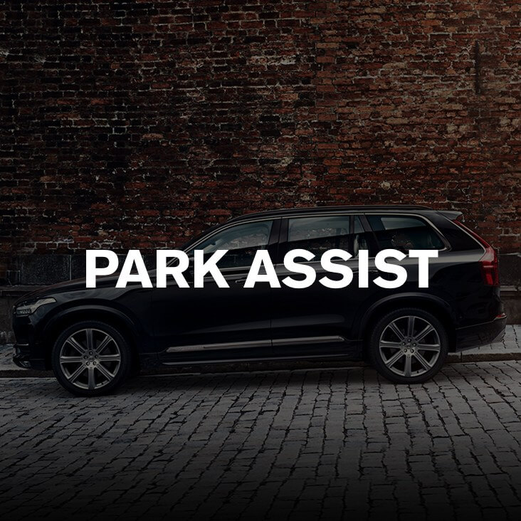 Park Assist Image