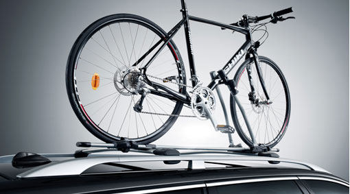 Bicycle holder, frame mounted