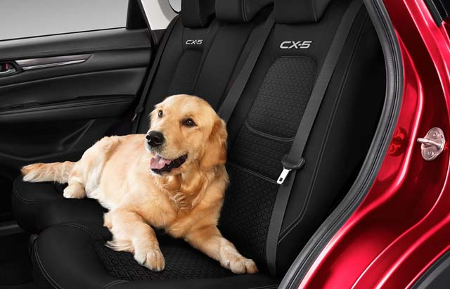 "<img src=""Rear Seat Cover"