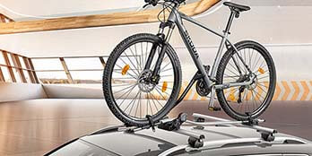 Roof Rack and Bicycle Carrier
