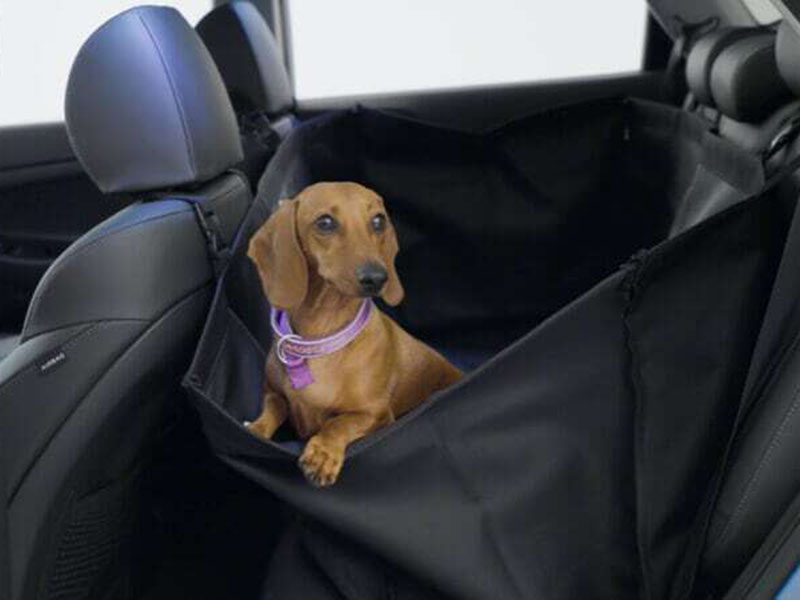 Rear seat pet cover