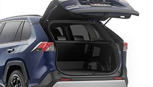 RAV4 Power back door