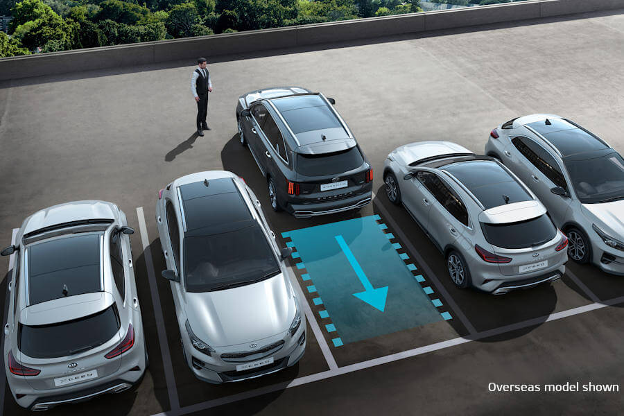 Remote Smart Parking Asssist