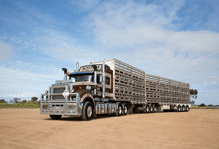 Super-Liner Livestock transport
