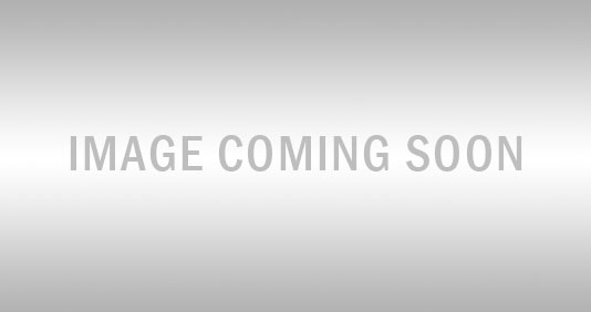 Trailers 2000kg Alloy Tandem Plate Series Multi-Roller Trailer