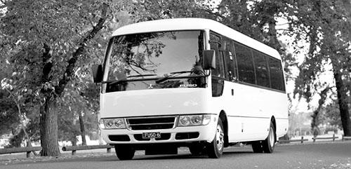 Rosa Rosa Bus