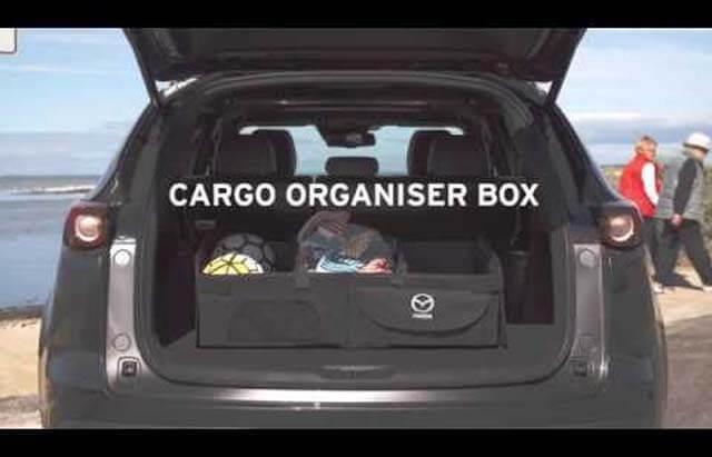 Cargo Organiser Box