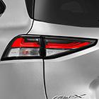 Rear Combination LED Lights Image