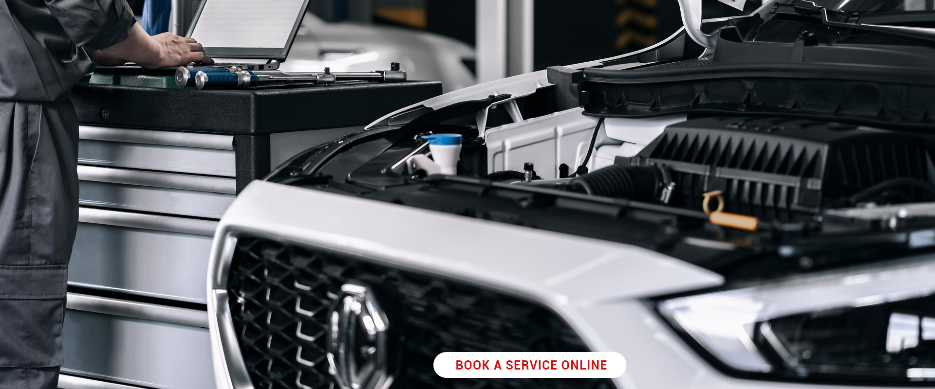 Service Your MG