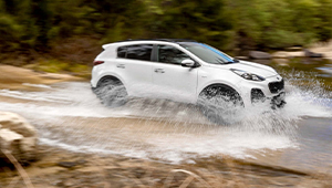 Sportage Power To You