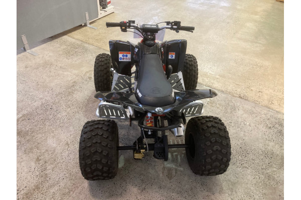2018 BRP DS 90 X Other Image 4