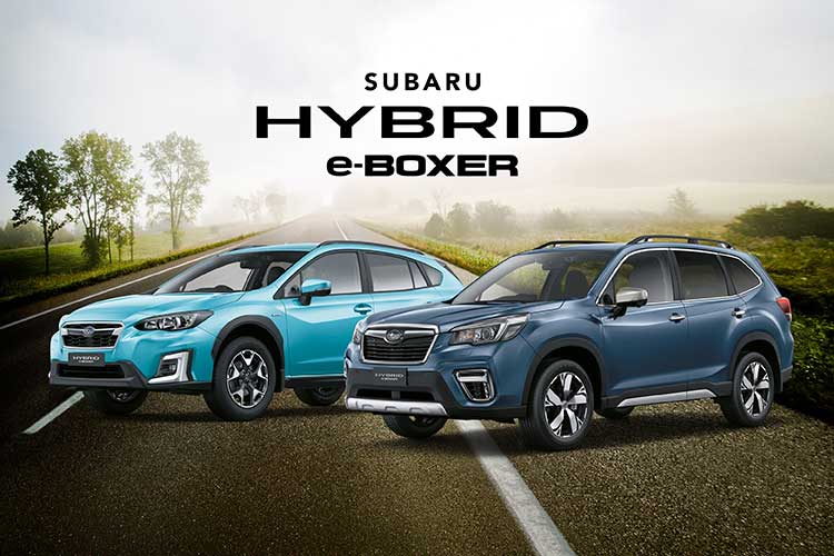 Hybrid power with free servicing