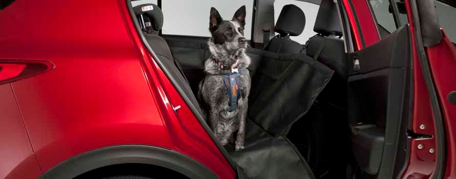 "<img src=""Pet Seat Cover"