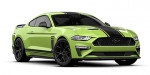 ford Mustang R-Spec accessories Warwick