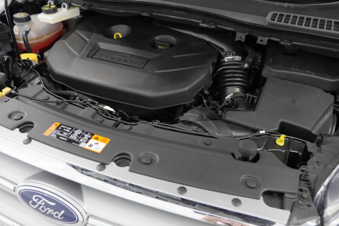 2018 Ford Escape ZG 2018.00MY Trend Suv