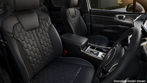 Sorento Luxury at large.