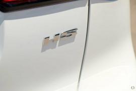 2020 MY21 MG HS SAS23 Essence Anfield Wagon image 10