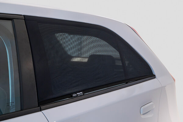Window Sox