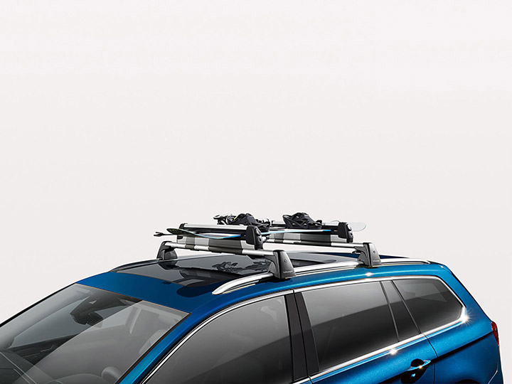 Ski and snowboard carrier