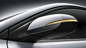 Elantra Mirrors with more