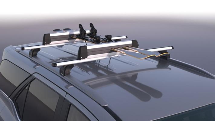 Ski/Snowboard Carrier